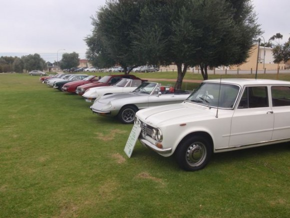 A line up of Alfas